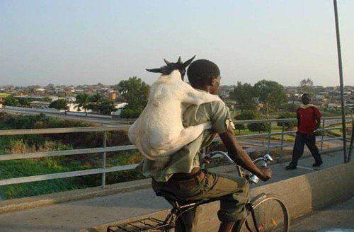 Африканець на велосипеді